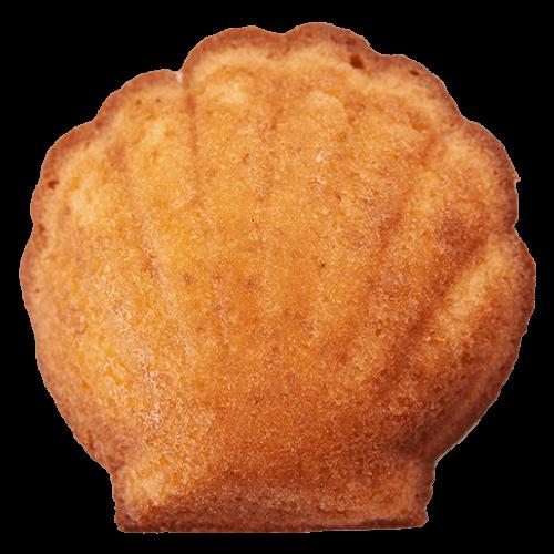 baked_madeleine